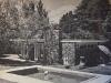 redwoods-1962